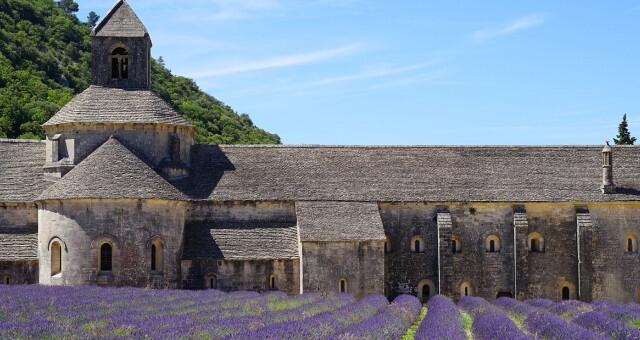Tour operators announced an increase in demand for tours to France by 40%