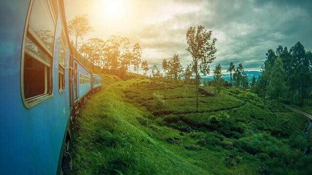 Plus 86%: Russian tourists in Sri Lanka are the only ones who showed growth
