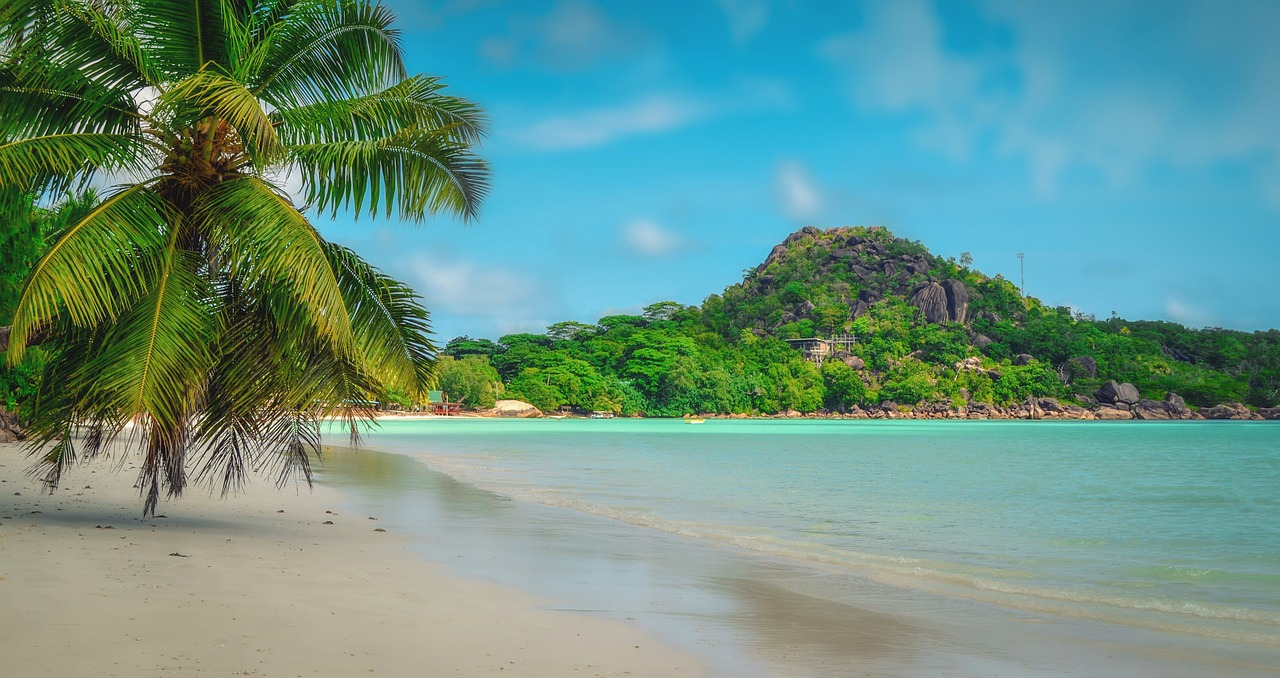 The Seychelles - prospective for the season of 2019